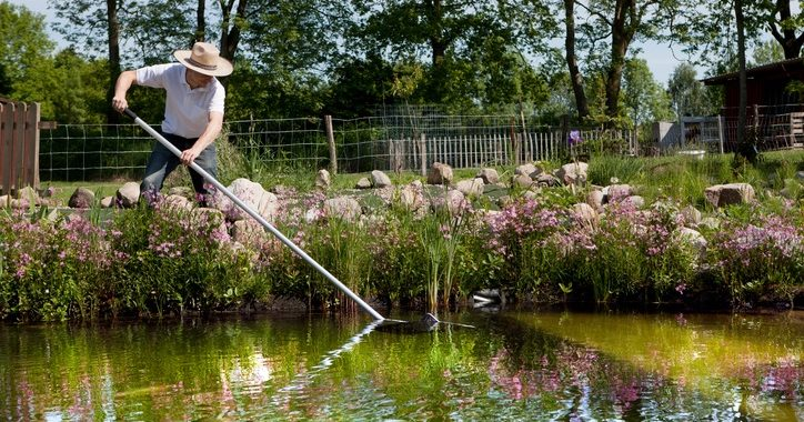 Spring Cleaning Your Pond: A Step-by-Step Guide