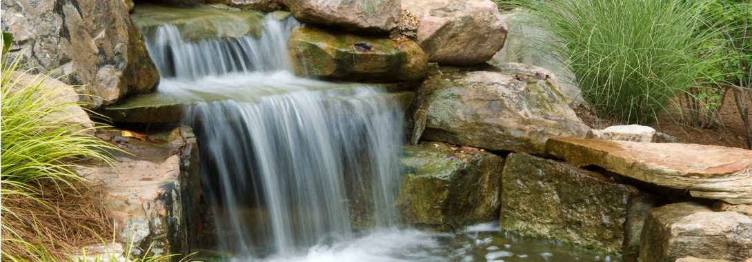 6 Things to Consider When Designing Your Backyard Pond