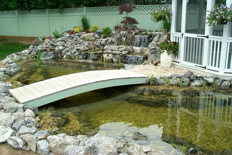 Reasons to Install a Backyard Pond