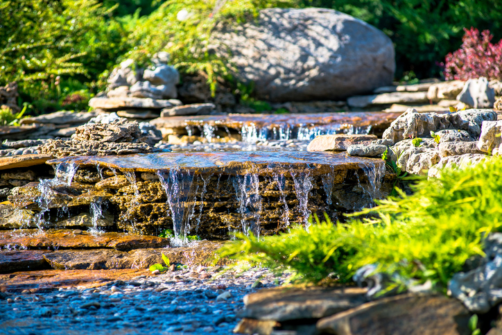 5 Tips To Keep Your Pond Water Clean