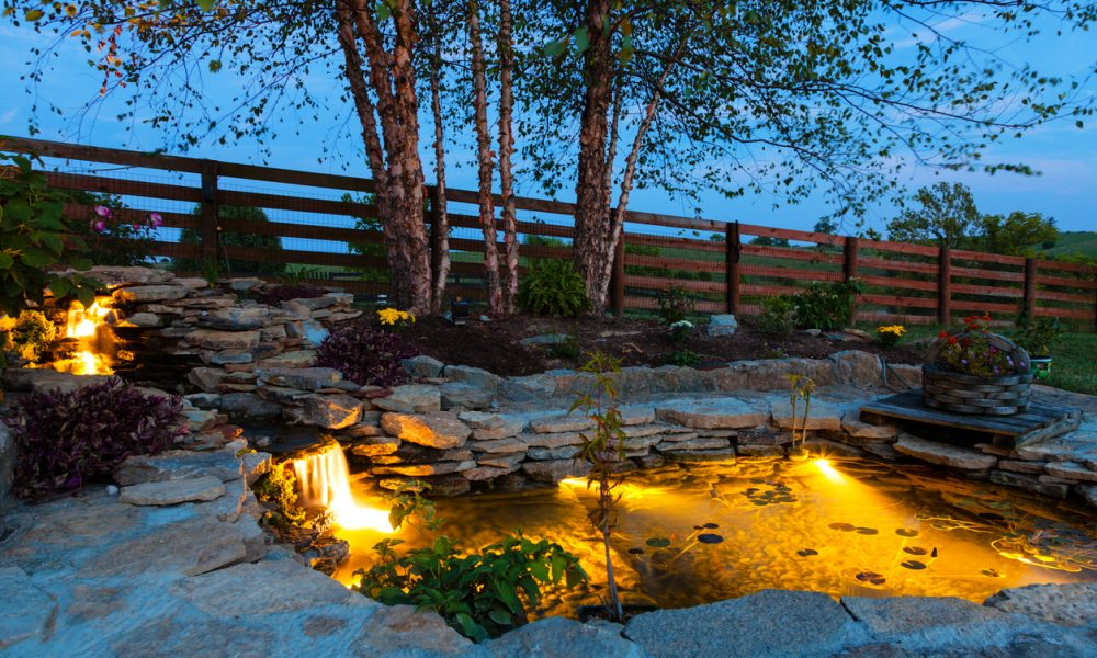 How to Add Lighting To Your Pond