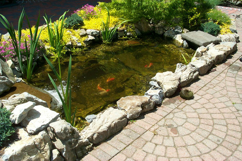 Tips For Decorating a Small Pond