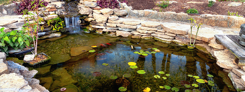Pond Installation Nassau | Pond Maintenance Nassau County