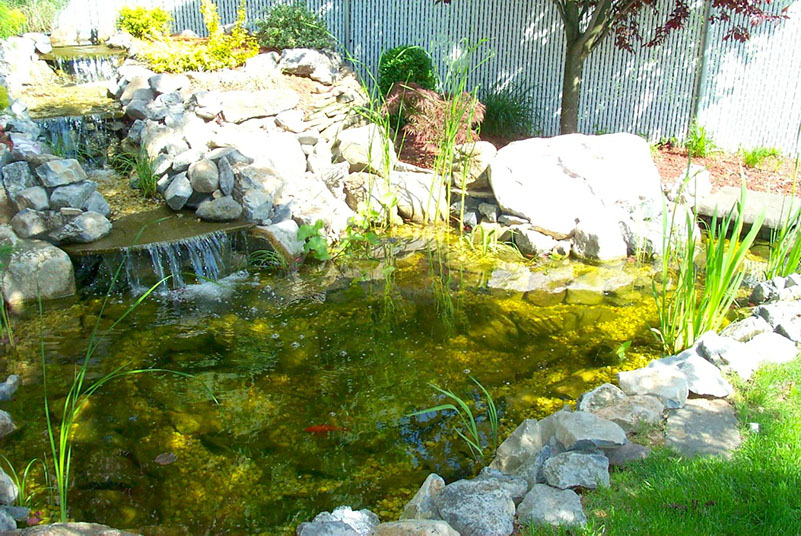 Pond Builder Suffolk County | Pond Cleaning Dix Hills & Huntington | Pond Cleaning Levittown | Paradise Ponds